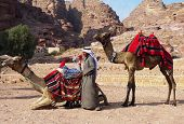 Bedouin with camels in Petra, Jordan