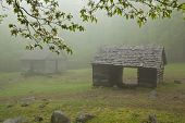 Rustic cabins in the Smoky Mountains on a foggy spring day