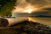 Log On Rocky Shore With Warm Sunset