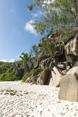 tropical beach of the island of La Digue. Seychelles