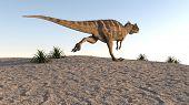 cerantosaurus on sand terrain
