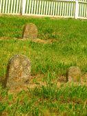 Shaker Graves