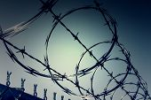 stock photo of bird fence  - Dark zone of barbwire fences - JPG