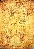 Da Vinci Hands