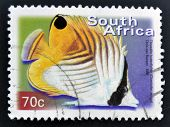 A stamp printed in RSA shows threadfin butterflyfish Chaetodon auriga