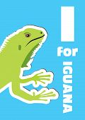 I For Iguana, An Animal Alphabet For The Kids