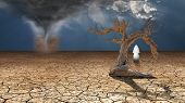 stock photo of wander  - Holy Wanderer on dried desert mud faces desert dust devil - JPG