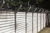 stock photo of razor  - Precast concrete wall with razor sharp security wire protecting property