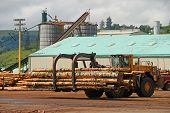 stock photo of logging truck  - Log loader working a lumber mill logging truck reciving yard in Roseburg Oregon - JPG