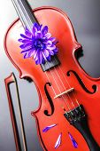 Artistic Poetic Violin