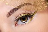 Brown female eye with a glamour golden make-up and artificial  leaf at face