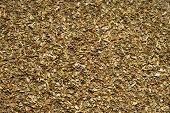 Spice dried Basil. Close-up.