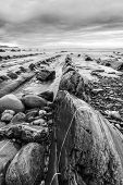 Barrika beach in black and white