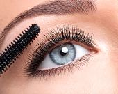 Female eye with long false eyelashes and makeup brush - over white background