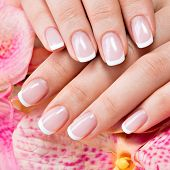 stock photo of french manicure  - Beautiful woman - JPG