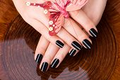 picture of black woman spa  - Beautiful women hands with black manicure after Spa procedures  - JPG