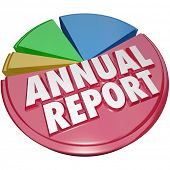 Annual Report Pie Chart Business Growth Summary Financial Filing