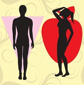 picture of broad-bodied  - Vector Illustration of female body shape apple also known as cone - JPG