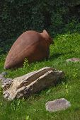 Brown amphora
