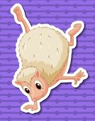 Illustration of a single hedgehog
