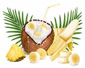 Cracked coconut with milk splash and slices of ripe bananas and pineapple. Vector illustration.