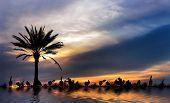 Nile River Magic