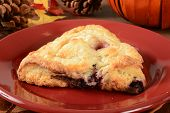 Cherry Chocoloate Chip Turnovers