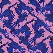 Pattern with macaw parrots. Hand drawn vector.