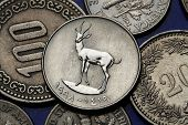 Coins of the United Arab Emirates. Sand Gazelle (Gazella subgutturosa marica) depicted in an UAE twe