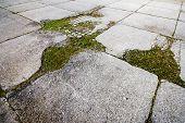 Concrete Paving Texture