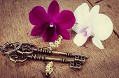 Vintage Keys With Orchaid Flowe