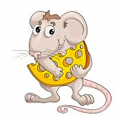 little mouse with slice of cheese on isolated white
