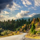 Winding Road To Forest In Mountains