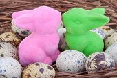 Quail eggs in nest with two Easter bunnies