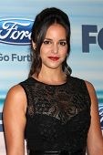 LOS ANGELES - SEP 8:  Melissa Fumero at the 2014 FOX Fall Eco-Casino at The Bungalow on September 8, 2014 in Santa Monica, CA