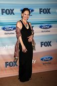 LOS ANGELES - SEP 8:  Beth Grant at the 2014 FOX Fall Eco-Casino at The Bungalow on September 8, 201