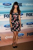 LOS ANGELES - SEP 8:  Hannah Simone at the 2014 FOX Fall Eco-Casino at The Bungalow on September 8, 2014 in Santa Monica, CA