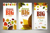 Set of fresh natural fall vertical banners with leafs and sample text