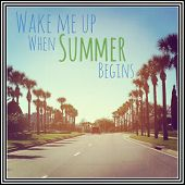 Inspirational Typographic Quote - Wake me up when Summer begins