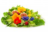 Fresh Green Salad With Flowers And Fig Fruits Isolated On White