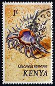 Postage Stamp Kenya 1983 Ramose Murex, Sea Snail