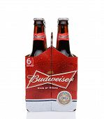 Budweiser Six Pack End View