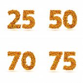 Numbers of autumn leaves collection.