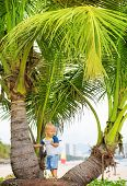 Baby near palmtree on the beach