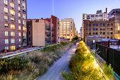 New York City, USA on the High Line Park.
