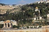 image of church mary magdalene  - Church of All Nations and the golden domes of the Church of Mary Magdalene - JPG