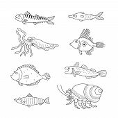 pic of dory  - Set of monochrome vector doodle fishes and sea dwellers isolated on white background - JPG
