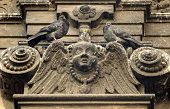 pigeons on the bas-relief