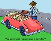 stock photo of policeman  - Cartoon of dog driving car - JPG