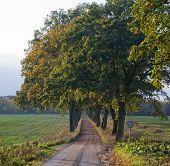 Scandinavian trail, travel on foot or bike in Sweden.